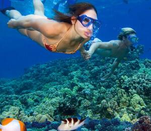 Puerto Vallarta Snorkeling